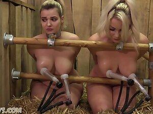 Dolly Plus Penny Lee On The Double Goat Milker